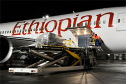 Ethiopian Airlines 787 Dreamliner Humanitarian Flight 250